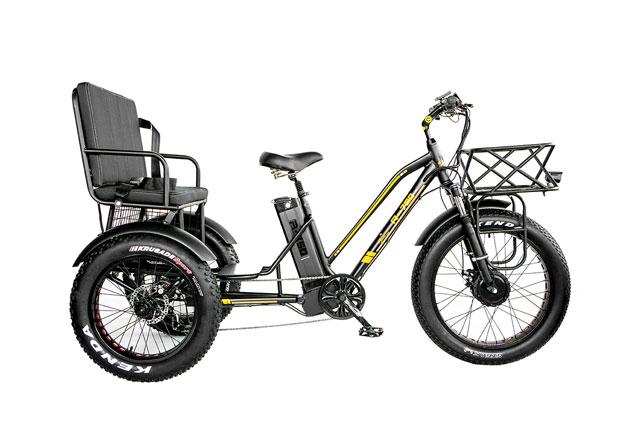 R-750z 500w Rickshaw Electric Fat Tire Tricycle With Rear Seat