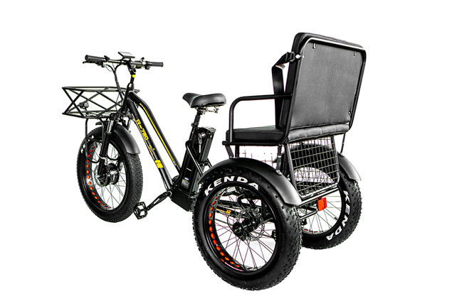 R-750z-500w-Rickshaw-side-back
