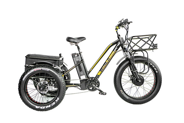 T-950 500w Electric Fat Tire Tricycle With Rear Storage